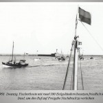 Nach Kriegsende: Helgoland – vogelfrei